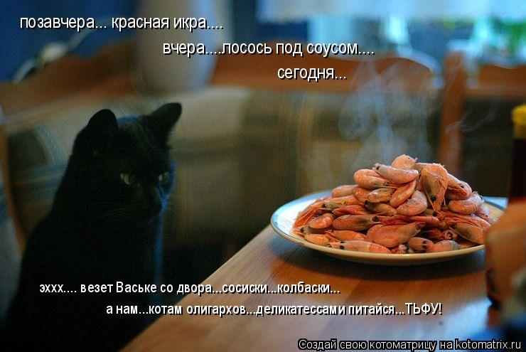 Котоматрица: позавчера... красная икра.... вчера....лосось под соусом.... сегодня... а нам...котам олигархов...деликатессами питайся...ТЬФУ! эххх.... везет Ваське