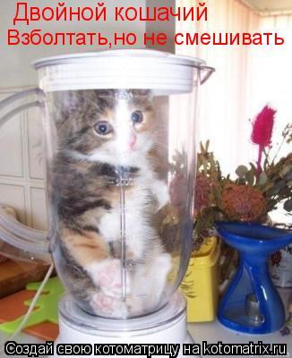 Котоматрица: Двойной кошачий Взболтать,но не смешивать
