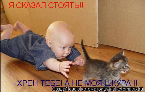 Котоматрица: - Я СКАЗАЛ СТОЯТЬ!!! - ХРЕН ТЕБЕ! А НЕ МОЯ ШКУРА!!!
