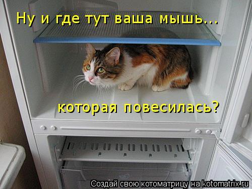 Котоматрица: Ну и где тут ваша мышь... которая повесилась?