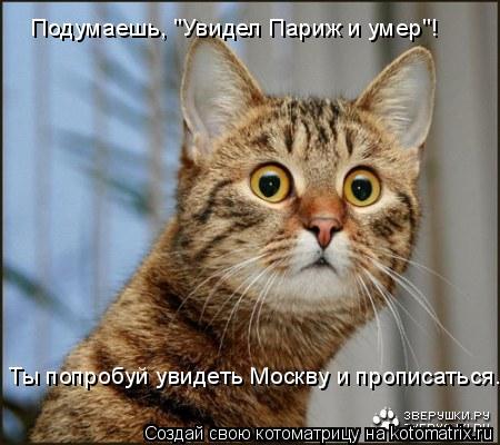 """Котоматрица: Подумаешь, """"Увидел Париж и умер""""! Ты попробуй увидеть Москву и прописаться."""