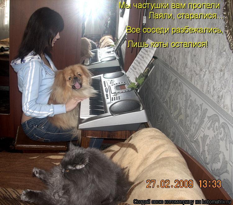 Котоматрица: Мы частушки вам пропели Лаяли, старалися... Все соседи разбежались, Лишь коты осталися!