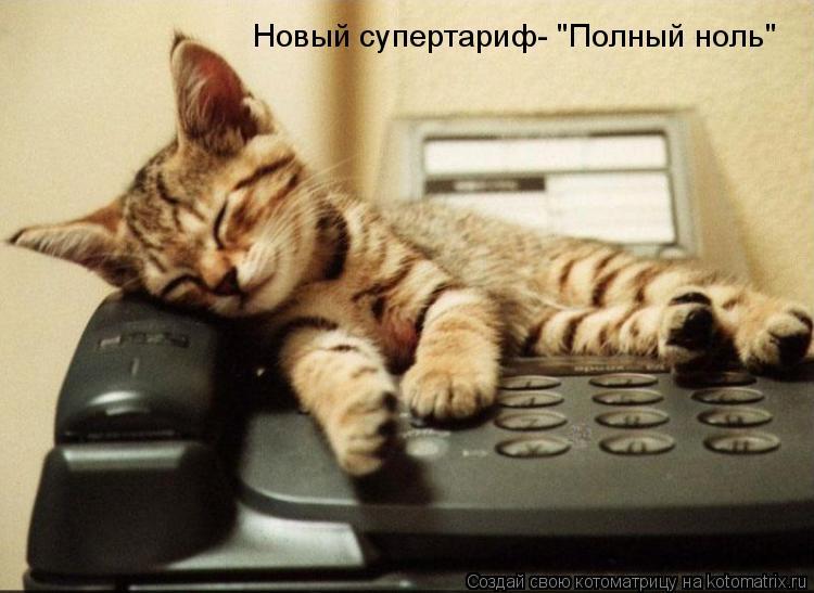 """Котоматрица: Новый супертариф- """"Полный ноль"""""""