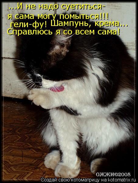 Котоматрица: ...И не надо суетиться- я сама могу помыться!!! гели-фу! Шампунь, крема... Справлюсь я со всем сама!