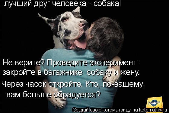 Лучший друг человека