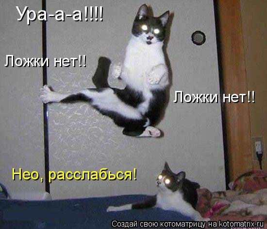 Котоматрица: Ура-а-а!!!! Ложки нет!! Ложки нет!! Нео, расслабься!