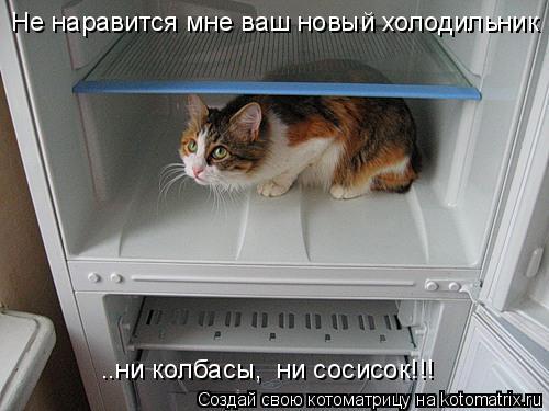 Котоматрица: Не наравится мне ваш новый холодильник ..ни колбасы,  ни сосисок!!!