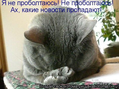 Котоматрица: Ах, какие новости пропадают! Я не проболтаюсь! Не проболтаюсь!