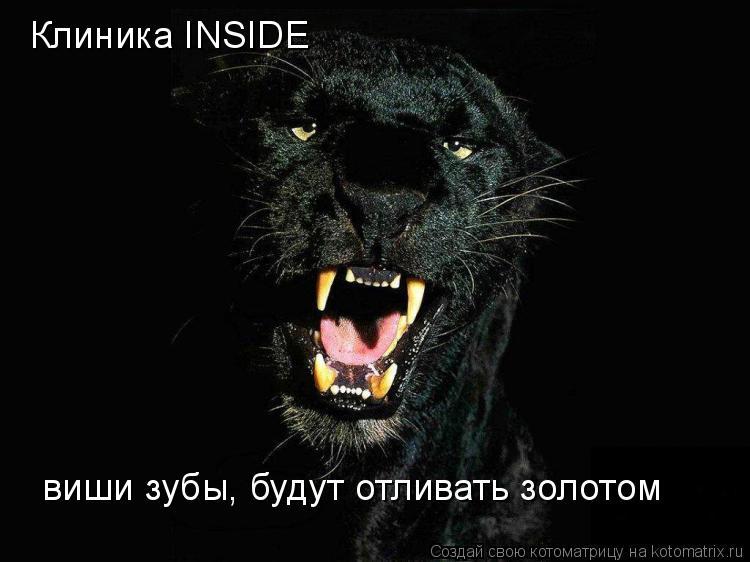 Котоматрица: Клиника INSIDE виши зубы, будут отливать золотом