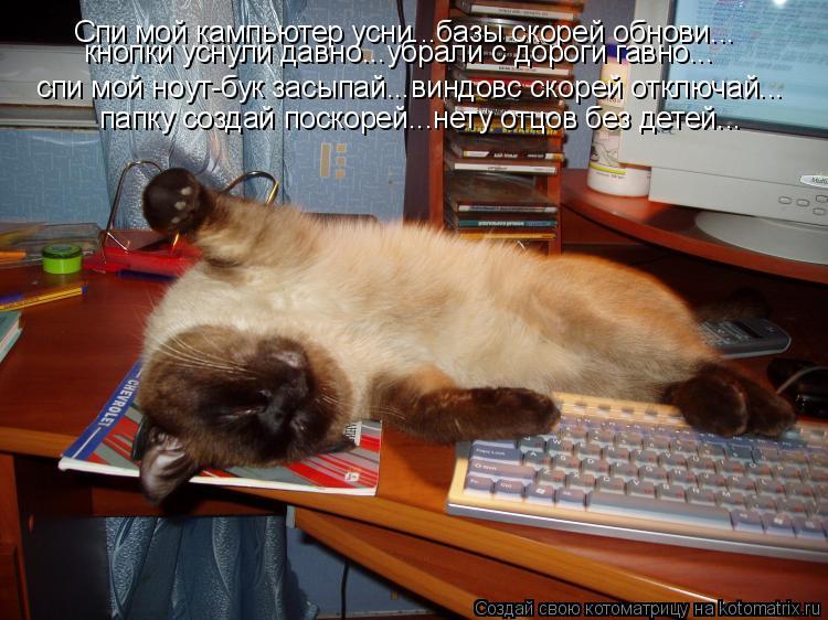 Котоматрица: Спи мой кампьютер усни...базы скорей обнови... кнопки уснули давно...убрали с дороги гавно... спи мой ноут-бук засыпай...виндовс скорей отключай