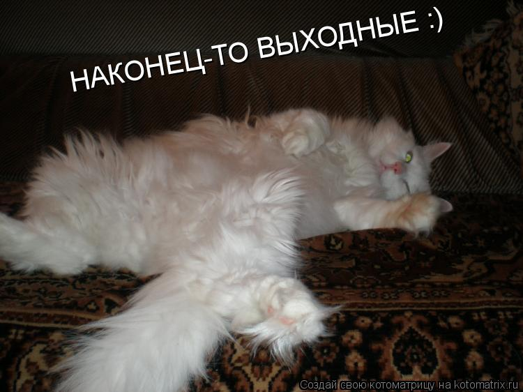 http://kotomatrix.ru/images/lolz/2009/03/13/dC.jpg