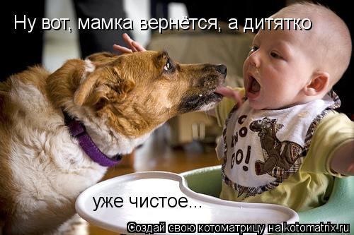 Котоматрица: Ну вот, мамка вернётся, а дитятко уже чистое...