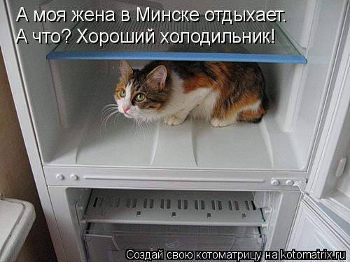 Котоматрица: А моя жена в Минске отдыхает. А что? Хороший холодильник!