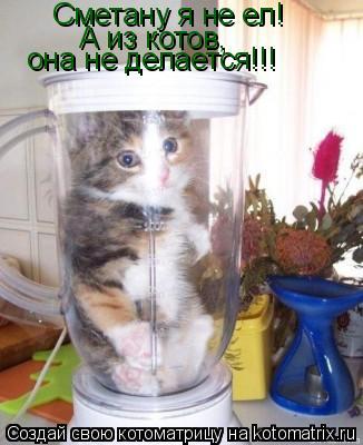 Котоматрица: Сметану я не ел! А из котов, она не делается!!!