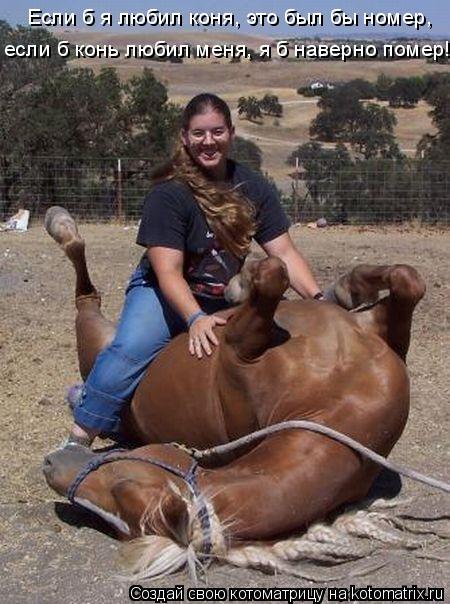 Котоматрица: Если б я любил коня, это был бы номер, если б конь любил меня, я б наверно помер!
