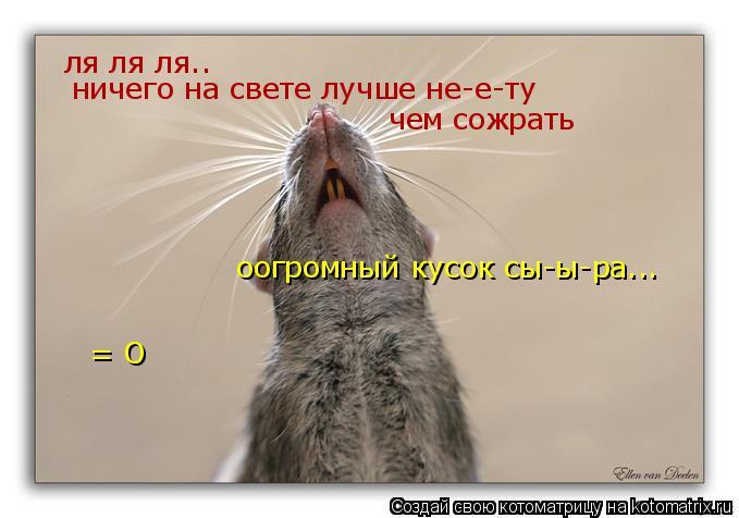 Котоматрица: ля ля ля.. ничего на свете лучше не-е-ту чем сожрать оогромный кусок сы-ы-ра... = О