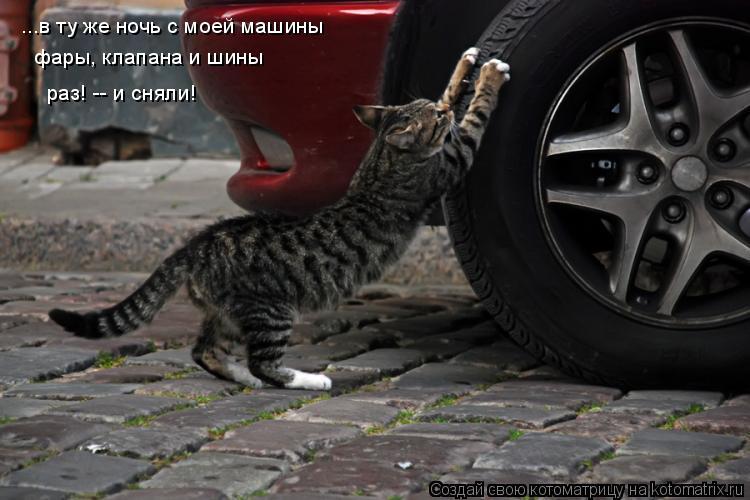 Котоматрица: ...в ту же ночь с моей машины фары, клапана и шины раз! -- и сняли!