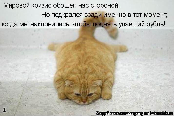 Котоматрица: Мировой кризис обошел нас стороной. Но подкрался сзади именно в тот момент, когда мы наклонились, чтобы поднять упавший рубль!