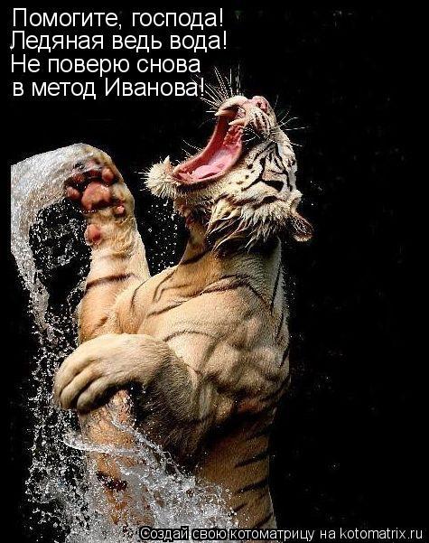 Котоматрица: Помогите, господа! Ледяная ведь вода! Не поверю снова в метод Иванова!