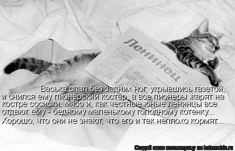 Котоматрица: Васька спал без задних ног, укрывшись газетой, и снился ему пионерский костер, а все пионеры жарят на костре сосиски, мясо и, как честные юны