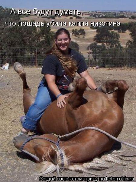 Котоматрица: А все будут думать, что лошадь убила капля никотина