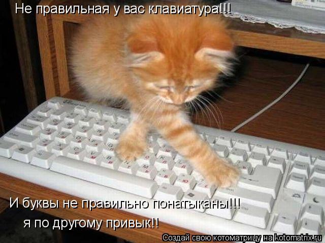 Котоматрица: Не правильная у вас клавиатура!!! И буквы не правильно понатыканы!!! я по другому привык!!