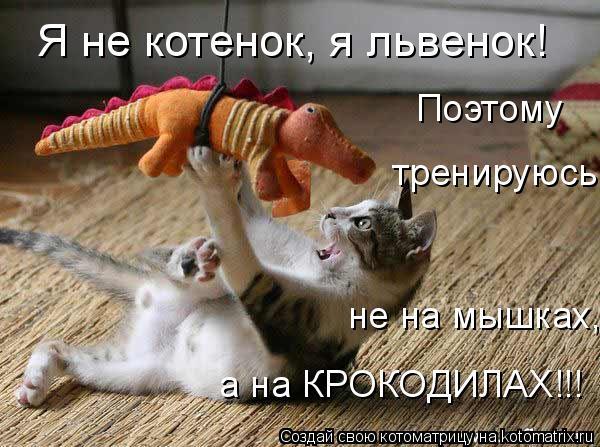 Котоматрица: Я не котенок, я львенок! Поэтому тренируюсь не на мышках, а на КРОКОДИЛАХ!!!