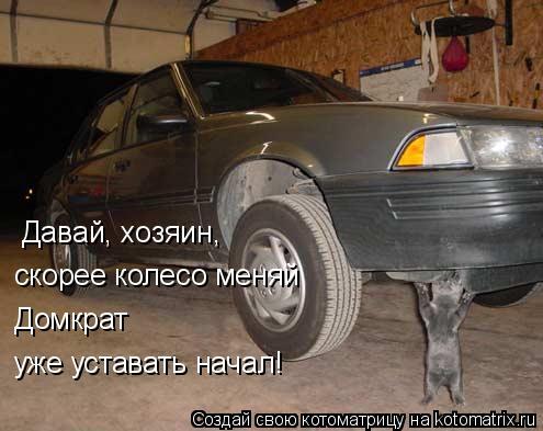 Котоматрица: Давай, хозяин, скорее колесо меняй Домкрат  уже уставать начал!