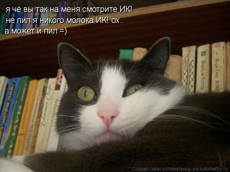 Котоматрица: я чё вы так на меня смотрите ИК! я чё вы так на меня смотрите ИК! не пил я никого молока ИК! ох.. а может и пил =)