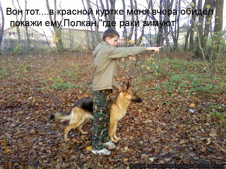 """Котоматрица: Вон тот....в красной куртке меня вчера обидел покажи ему,Полкан,""""где раки зимуют"""""""