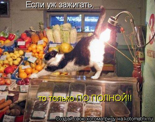 Котоматрица: Если уж зажигать, то только ПО ПОЛНОЙ!!