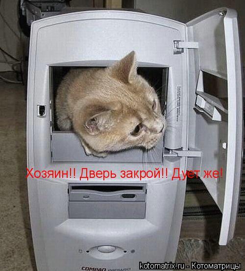 Котоматрица: Хозяин!! Дверь закрой!! Дует же!