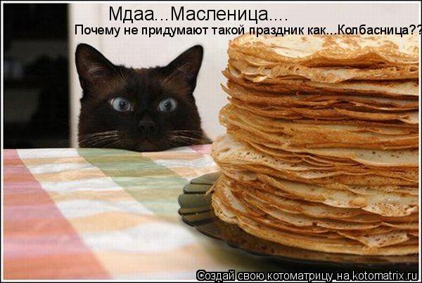 Котоматрица: Мдаа...Масленица.... Почему не придумают такой праздник как...Колбасница??