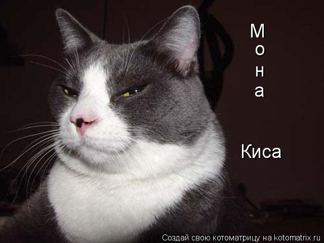 http://kotomatrix.ru/images/lolz/2009/03/14/rO.jpg