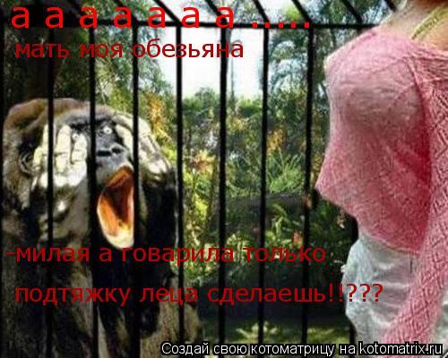 Котоматрица: а а а а а а а ..... мать моя обезьяна -милая а говарила только подтяжку леца сделаешь!!???