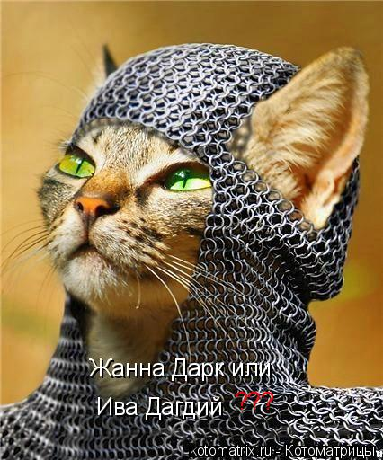 Котоматрица: Ива Дагдий  Жанна Дарк или ???