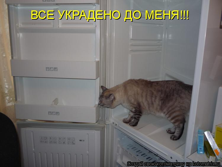 Котоматрица: ВСЕ УКРАДЕНО ДО МЕНЯ!!!
