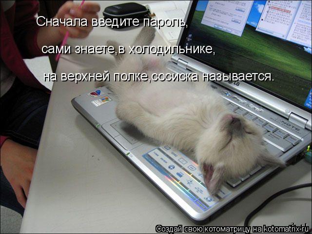 Котоматрица: Сначала введите пароль, сами знаете,в холодильнике, на верхней полке,сосиска называется.