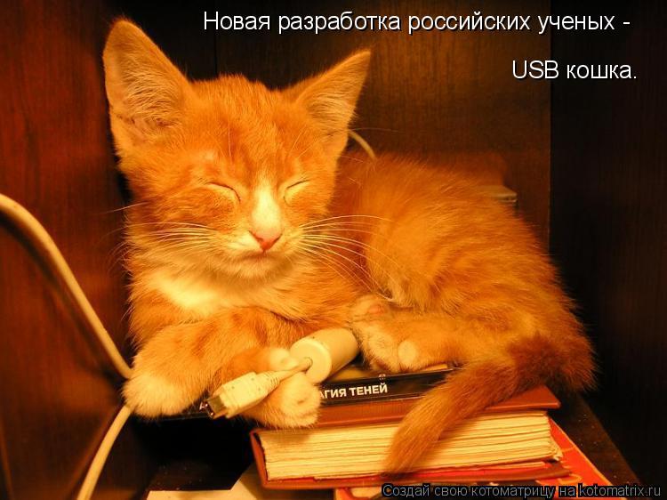 Котоматрица: USB кошка. Новая разработка российских ученых -