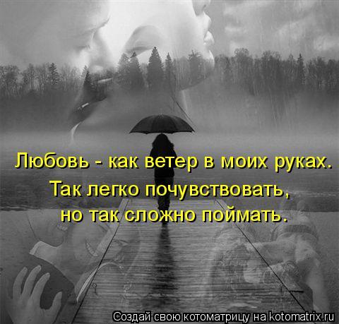 Котоматрица: Любовь - как ветер в моих руках.  Так легко почувствовать,   но так сложно поймать.