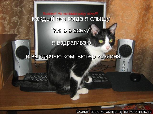 """Котоматрица: каждый раз когда я слышу  """"кинь в аську""""  я вздрагиваю  и выключаю компьютер хозяина"""