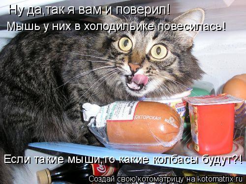 Котоматрица: Ну да,так я вам и поверил! Мышь у них в холодильике повесилась! Если такие мыши,то какие колбасы будут?!