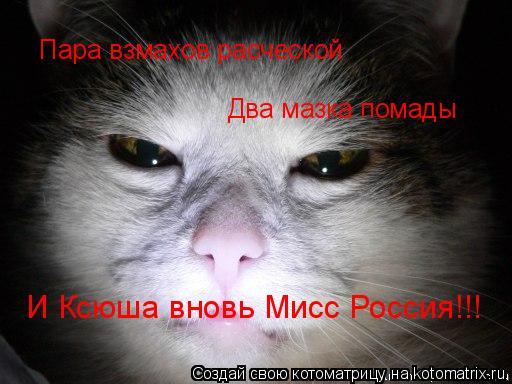 Котоматрица: Пара взмахов расческой Два мазка помады И Ксюша вновь Мисс Россия!!!