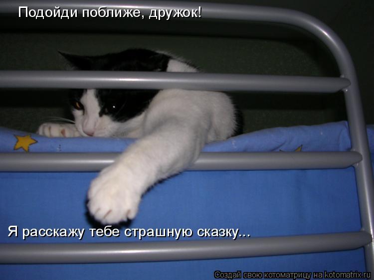 Котоматрица: Подойди поближе, дружок! Я расскажу тебе страшную сказку...