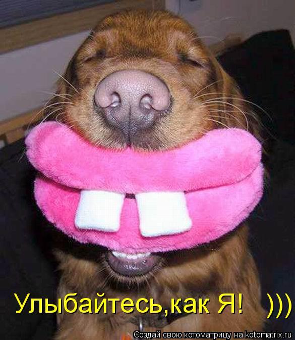 Котоматрица: Улыбайтесь,как Я!   )))