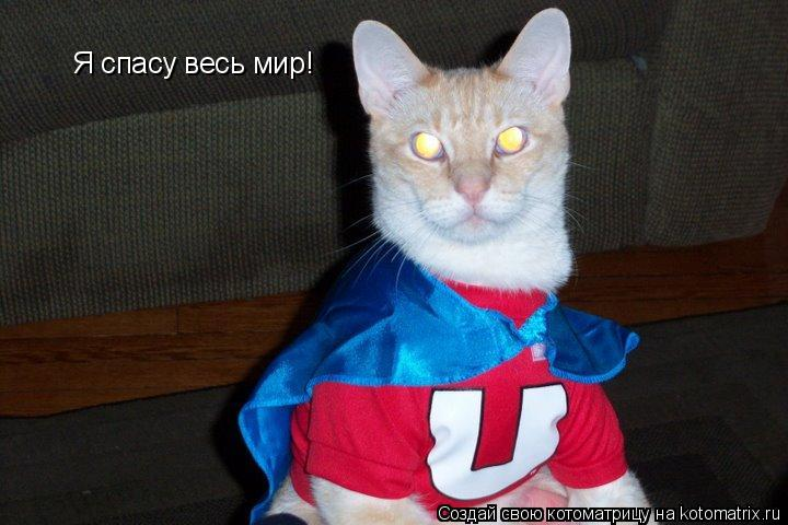 Котоматрица: Я спасу весь мир!