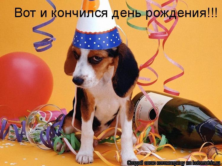 Котоматрица: Вот и кончился день рождения!!!