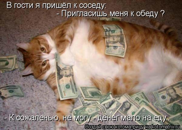 Котоматрица: В гости я пришёл к соседу:   - Пригласишь меня к обеду ? - К сожаленью, не могу - денег мало на еду..