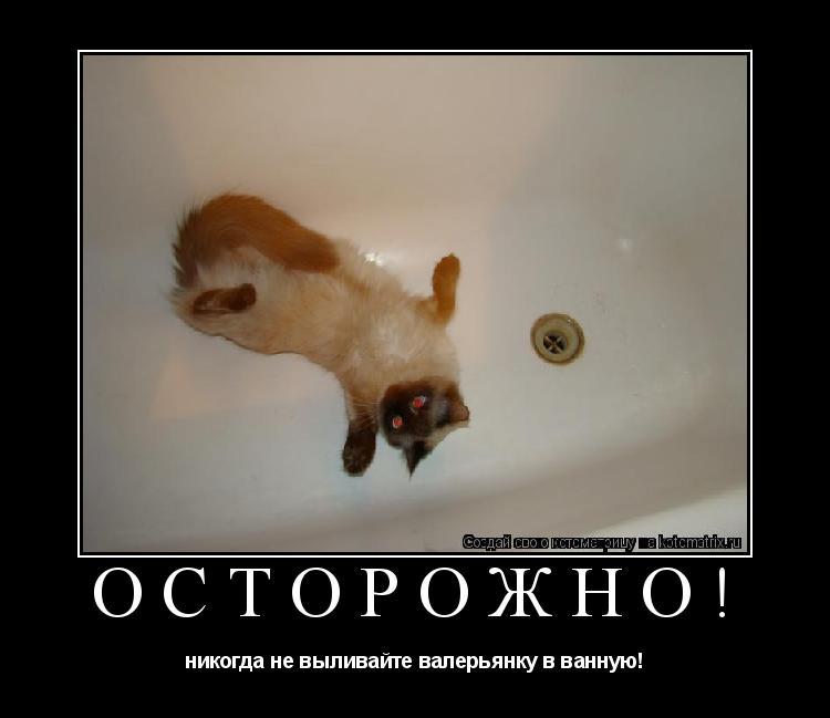 Котоматрица: Осторожно! никогда не выливайте валерьянку в ванную!