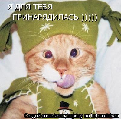Котоматрица: Я ДЛЯ ТЕБЯ ПРИНАРЯДИЛАСЬ )))))